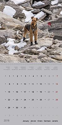 The Alpinedale (Wall Calendar 2018 300 × 300 mm Square) - Produktdetailbild 1