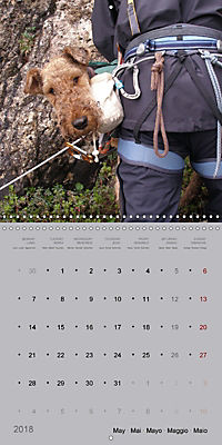 The Alpinedale (Wall Calendar 2018 300 × 300 mm Square) - Produktdetailbild 5