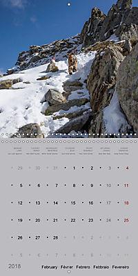 The Alpinedale (Wall Calendar 2018 300 × 300 mm Square) - Produktdetailbild 2