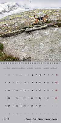 The Alpinedale (Wall Calendar 2018 300 × 300 mm Square) - Produktdetailbild 8