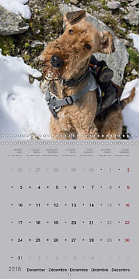The Alpinedale (Wall Calendar 2018 300 × 300 mm Square) - Produktdetailbild 12