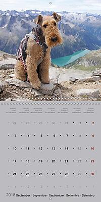 The Alpinedale (Wall Calendar 2018 300 × 300 mm Square) - Produktdetailbild 9