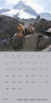 The Alpinedale (Wall Calendar 2018 300 × 300 mm Square) - Produktdetailbild 10