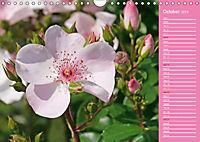 The amazing grace of Roses (Wall Calendar 2019 DIN A4 Landscape) - Produktdetailbild 10
