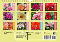 The amazing grace of Roses (Wall Calendar 2019 DIN A4 Landscape) - Produktdetailbild 13