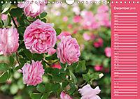 The amazing grace of Roses (Wall Calendar 2019 DIN A4 Landscape) - Produktdetailbild 12