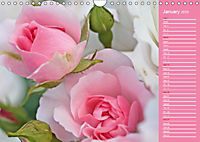 The amazing grace of Roses (Wall Calendar 2019 DIN A4 Landscape) - Produktdetailbild 1
