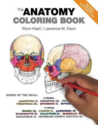 The Anatomy Coloring Book, Wynn Kapit, Lawrence M. Elson