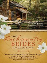 The Backcountry Brides Collection, Jennifer Hudson Taylor, Shannon McNear, Gabrielle Meyer, Denise Weimer, Carrie Fancett Pagels, Pegg Thomas, Angela K Couch, Debra E Marvin