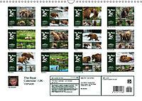 The Bear Calendar / UK-Version (Wall Calendar 2019 DIN A3 Landscape) - Produktdetailbild 13