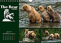 The Bear Calendar / UK-Version (Wall Calendar 2019 DIN A4 Landscape) - Produktdetailbild 6