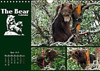 The Bear Calendar / UK-Version (Wall Calendar 2019 DIN A4 Landscape) - Produktdetailbild 4