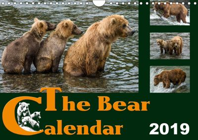 The Bear Calendar / UK-Version (Wall Calendar 2019 DIN A4 Landscape), Max Steinwald