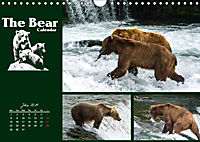 The Bear Calendar / UK-Version (Wall Calendar 2019 DIN A4 Landscape) - Produktdetailbild 7