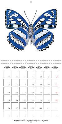 The Beauty of Butterflies (Wall Calendar 2019 300 × 300 mm Square) - Produktdetailbild 8