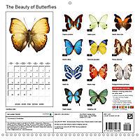 The Beauty of Butterflies (Wall Calendar 2019 300 × 300 mm Square) - Produktdetailbild 13