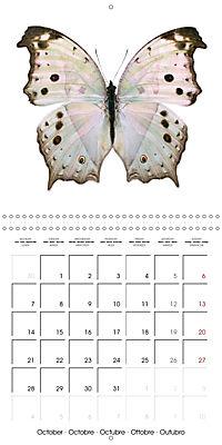 The Beauty of Butterflies (Wall Calendar 2019 300 × 300 mm Square) - Produktdetailbild 10