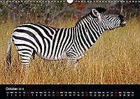 The beauty of Namibia 2019 (Wall Calendar 2019 DIN A3 Landscape) - Produktdetailbild 10