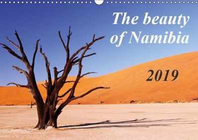 The beauty of Namibia 2019 (Wall Calendar 2019 DIN A3 Landscape), Wibke Woyke
