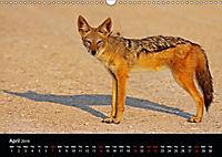 The beauty of Namibia 2019 (Wall Calendar 2019 DIN A3 Landscape) - Produktdetailbild 4
