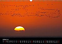 The beauty of Namibia 2019 (Wall Calendar 2019 DIN A3 Landscape) - Produktdetailbild 6