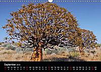 The beauty of Namibia 2019 (Wall Calendar 2019 DIN A3 Landscape) - Produktdetailbild 9