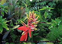 The Big Island of Hawaii - Zuhause von Feuergöttin Pele (Wandkalender 2019 DIN A3 quer) - Produktdetailbild 6