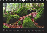 The Black Forest - UK Version (Wall Calendar 2019 DIN A4 Landscape) - Produktdetailbild 6