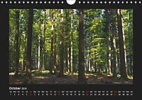 The Black Forest - UK Version (Wall Calendar 2019 DIN A4 Landscape) - Produktdetailbild 10