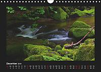 The Black Forest - UK Version (Wall Calendar 2019 DIN A4 Landscape) - Produktdetailbild 12