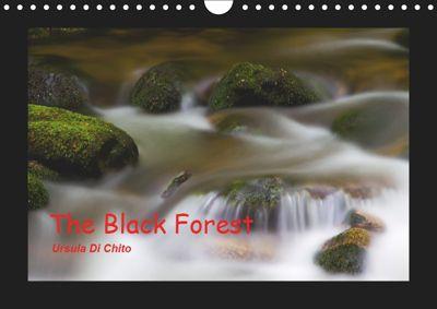 The Black Forest - UK Version (Wall Calendar 2019 DIN A4 Landscape), Ursula Di Chito