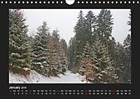 The Black Forest - UK Version (Wall Calendar 2019 DIN A4 Landscape) - Produktdetailbild 1
