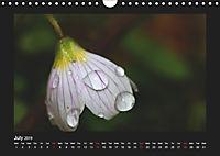 The Black Forest - UK Version (Wall Calendar 2019 DIN A4 Landscape) - Produktdetailbild 7