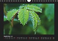 The Black Forest - UK Version (Wall Calendar 2019 DIN A4 Landscape) - Produktdetailbild 9