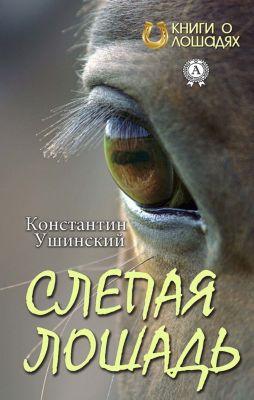 The Blind Horse, Konstantin Ushinskiy