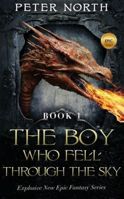 The Boy Who Fell Through The Sky: The Boy Who Fell Through The Sky, Peter North
