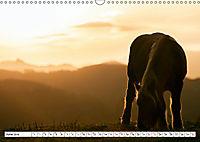 The colourful North of Spain (Wall Calendar 2019 DIN A3 Landscape) - Produktdetailbild 6