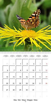 The colourful world of butterflies (Wall Calendar 2019 300 × 300 mm Square) - Produktdetailbild 5