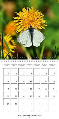 The colourful world of butterflies (Wall Calendar 2019 300 × 300 mm Square) - Produktdetailbild 4