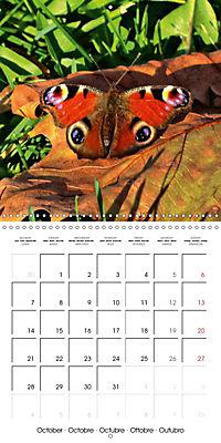 The colourful world of butterflies (Wall Calendar 2019 300 × 300 mm Square) - Produktdetailbild 10