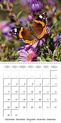 The colourful world of butterflies (Wall Calendar 2019 300 × 300 mm Square) - Produktdetailbild 12