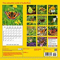 The colourful world of butterflies (Wall Calendar 2019 300 × 300 mm Square) - Produktdetailbild 13