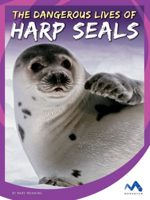 The Dangerous Lives of Harp Seals, Mary Meinking