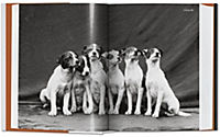 The Dog in Photography 1839-Today - Produktdetailbild 1