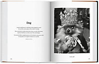The Dog in Photography 1839-Today - Produktdetailbild 2