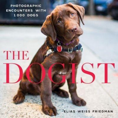 The Dogist, Elias Weiss Friedman