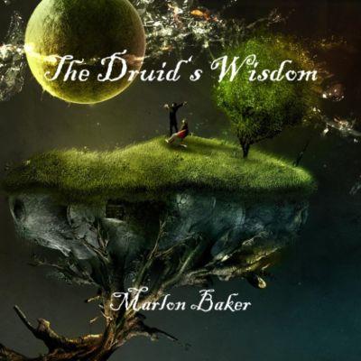 The Druid's Wisdom