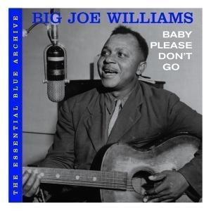 The Essential Blue Archive, Big Joe Williams