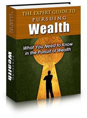 The Expert Guide to Pursuing Wealth, mohamed el houcheimi