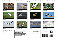 The Flight of Birds by Tony Mills (Wall Calendar 2019 DIN A4 Landscape) - Produktdetailbild 13